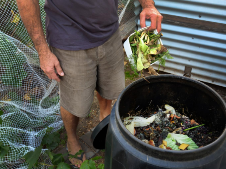 Get the Dirt on Compost