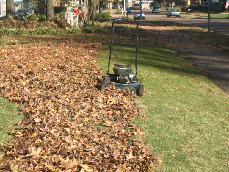 Mulch Mowing Enriches Soil