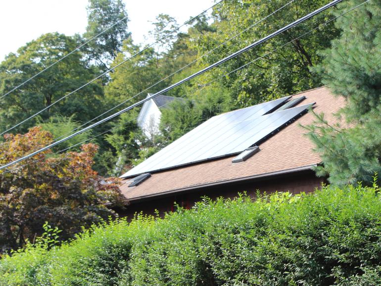 Solar Neighbor