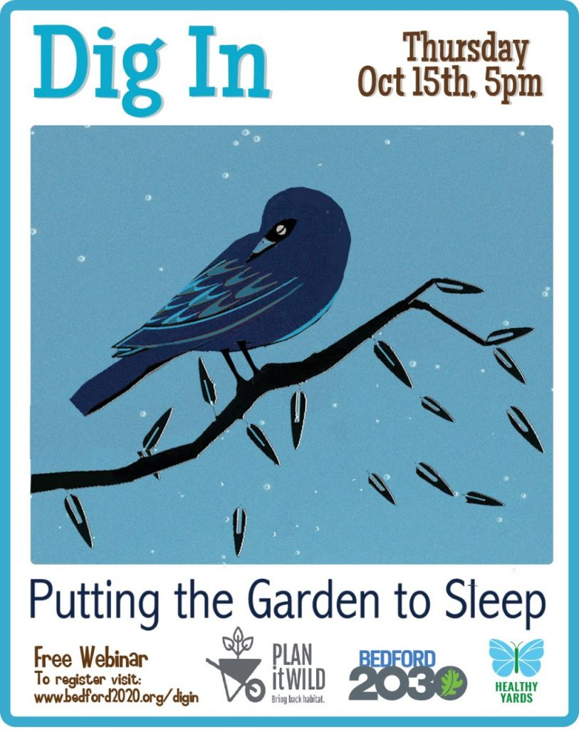 Dig In poster - Putting the Garden to Sleep 10/15