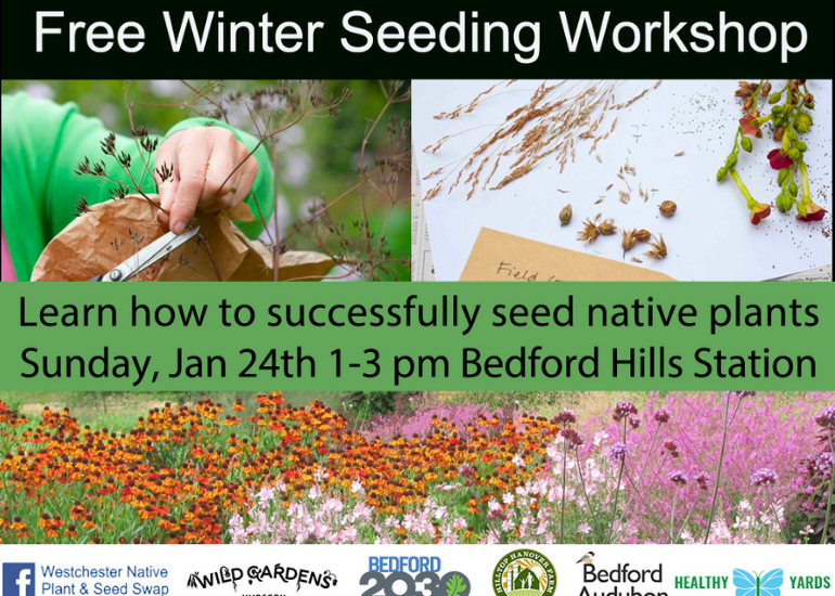 freed winter seeding workshop - January. 24th at the Bedford Hills Train Station