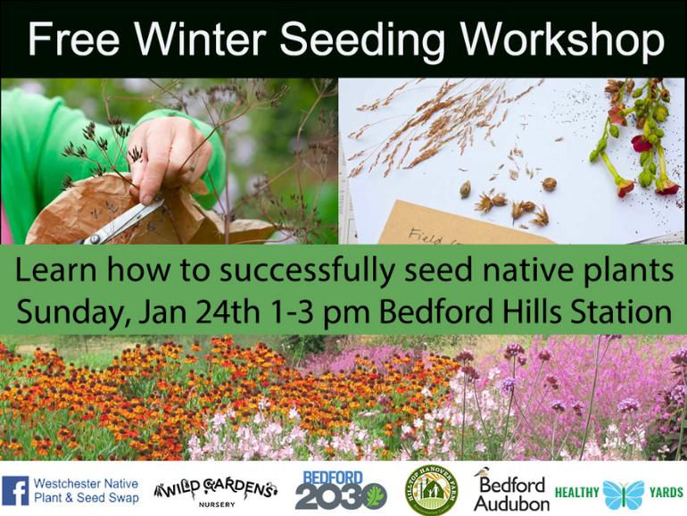 Free Native Plant Winter Seeding Workshop