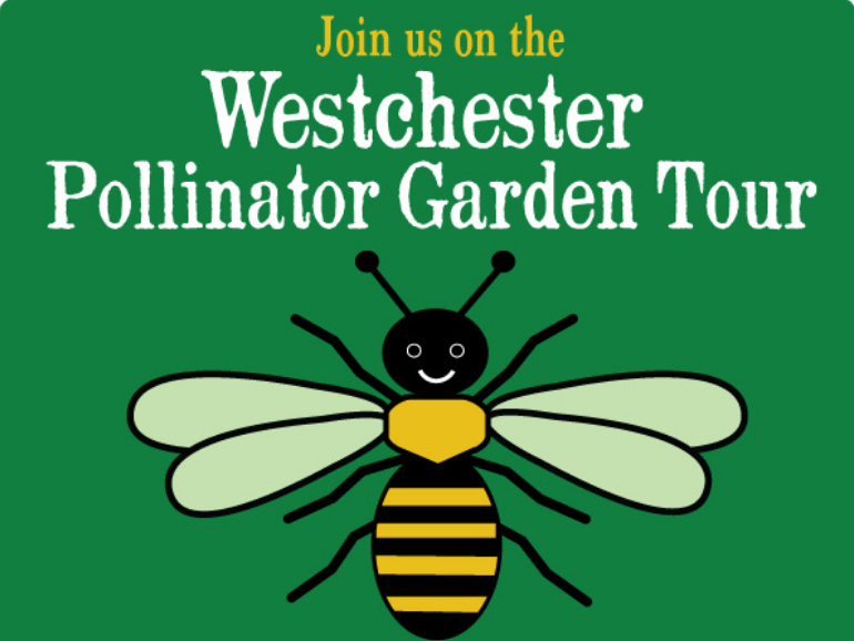 Join us for the Westchester Pollinator Garden Tour!